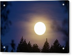 Super Full Moon Acrylic Print