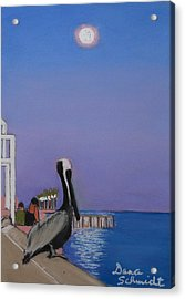 Super Moon Over St. Pete Acrylic Print