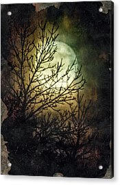 Supermoon At Retzer Nature Center- Wisconsin Acrylic Print by Jennifer Rondinelli Reilly - Fine Art Photography