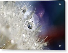 Acrylic Print featuring the photograph Supernova by Amy Tyler