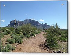 Acrylic Print featuring the photograph Superstition Trails by Gordon Beck