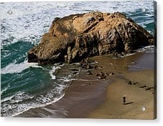 Surf Fishing At Ocean Beach Acrylic Print