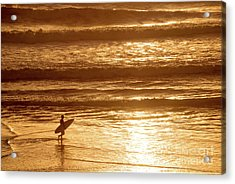 Surfer Acrylic Print by Delphimages Photo Creations