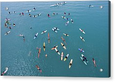Surfing Synergy Acrylic Print by David Levy