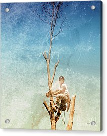 Surgeon Of The Sky  Acrylic Print by Steven Digman
