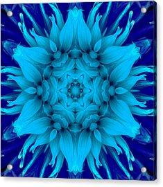 Surreal Flower No. 5 Acrylic Print