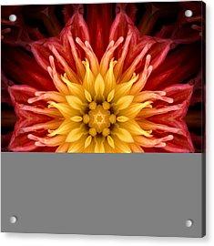 Surreal Flower No.1 Acrylic Print
