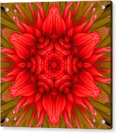 Surreal Flower No.6 Acrylic Print