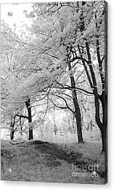 Acrylic Print featuring the photograph Surreal Infrared Black White Nature Trees - Haunting Black White Trees Nature Infrared by Kathy Fornal