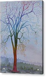 Surreal Tree No. 3 Acrylic Print by Debbie Homewood