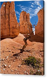 Surrounded By Hoodoos Acrylic Print by James Marvin Phelps