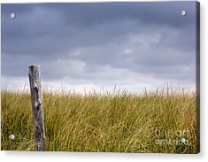 Acrylic Print featuring the photograph That That Same Small Town In Each Of Us by Dana DiPasquale