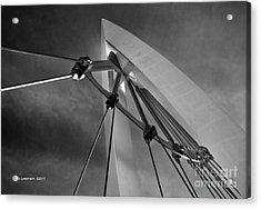 Suspension Acrylic Print by Fred Lassmann