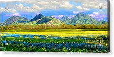 Sutter Buttes In Spring Acrylic Print