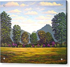 Sutter Buttes In Springtime Acrylic Print by Frank Wilson