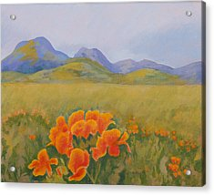 Sutter Buttes With California Poppies Acrylic Print