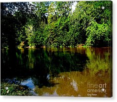 Suwannee River Acrylic Print by Greg Patzer