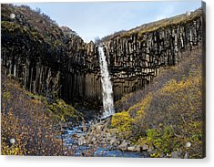 Acrylic Print featuring the photograph Svartifoss by James Billings