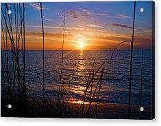 Sw Florida Sunset Acrylic Print