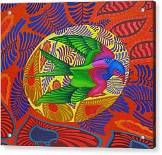 Swallow Tailed Kite Acrylic Print