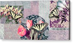 Swallowtail Butterfly 1 Acrylic Print by JQ Licensing