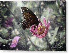 Swallowtail In A Fairytale Acrylic Print
