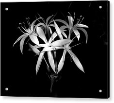 Acrylic Print featuring the photograph Swamp Lilies by Peg Urban