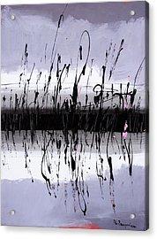 Swamp Acrylic Print by Mario Zampedroni