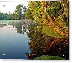 Swamp Pond Acrylic Print by Michael Whitaker