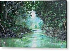 Swampland Acrylic Print