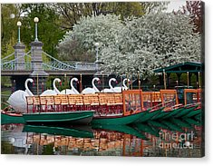 Swan Boat Spring Acrylic Print by Susan Cole Kelly