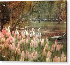 Swan Boats And Tulips - Boston Public Garden Acrylic Print by Joann Vitali