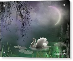 Swan By Moonlight Acrylic Print