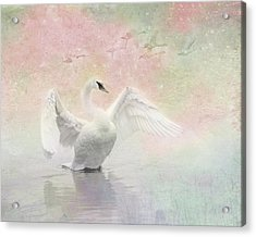 Acrylic Print featuring the photograph Swan Dream - Display Spring Pastel Colors by Patti Deters