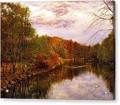 Swan Lake Acrylic Print by Jessica Jenney