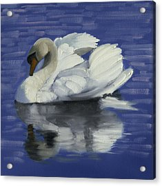 Swan Lake Acrylic Print by John Reynolds