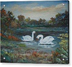 Swan Acrylic Print by M Bhatt