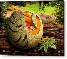 Swan Melon Acrylic Print