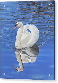 Acrylic Print featuring the painting Swan Reflection by Elizabeth Lock