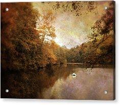Swan Song II Acrylic Print