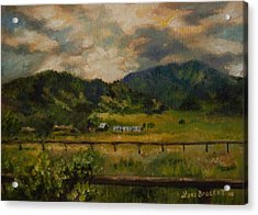 Swan Valley Hillside Acrylic Print