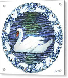 Swan With Knotted Border Acrylic Print