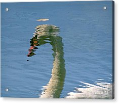 Swanreflection Acrylic Print