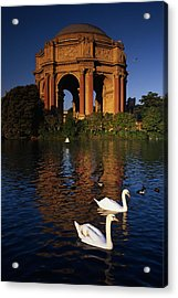 Swans And Palace Of Fine Arts Acrylic Print by Panoramic Images