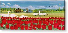 Swans And Tulips Acrylic Print by Bob Patterson