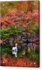 Swans In The Boston Public Garden Acrylic Print by Joann Vitali