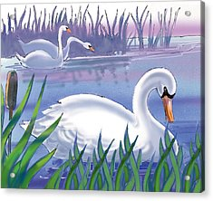 Swans Acrylic Print by Valer Ian