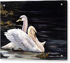 Swansong Acrylic Print by Kathleen Marshall McConnell