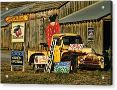 Swanton Berry Farm / International Pickup Acrylic Print by Steve Siri