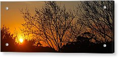Acrylic Print featuring the photograph Sway by HweeYen Ong